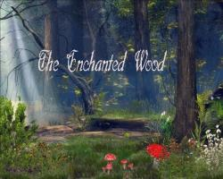 Cover art for Viola part from The Enchanted Woods
