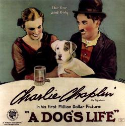 Cover art for A Dog's Life - soundtrack for an episode in Charlie Chaplin's 1918 silent film