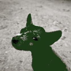 Cover art for The Green Dog