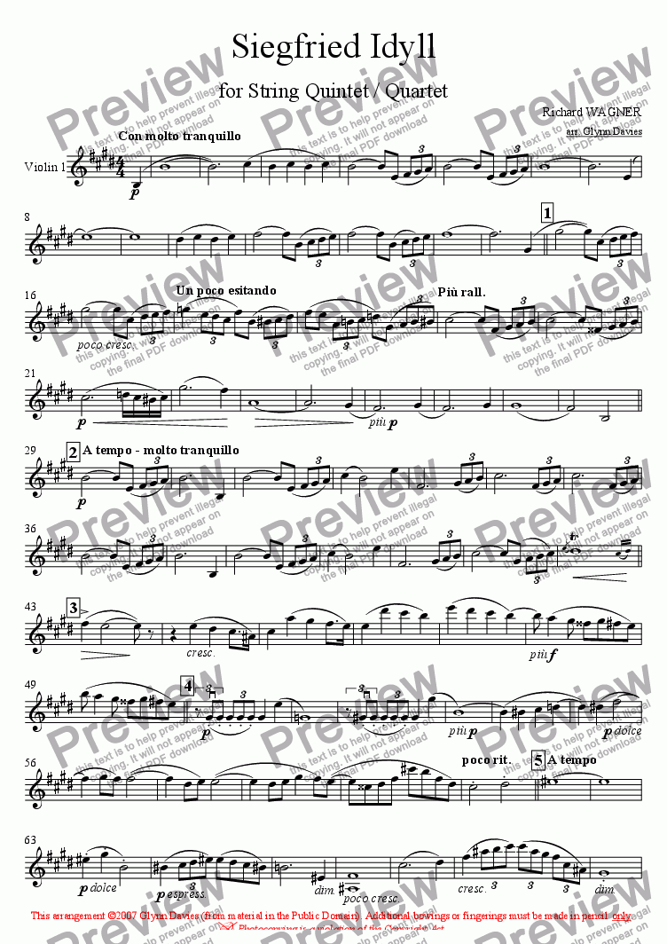 page one of the Violin 1 part from Siegfried Idyll