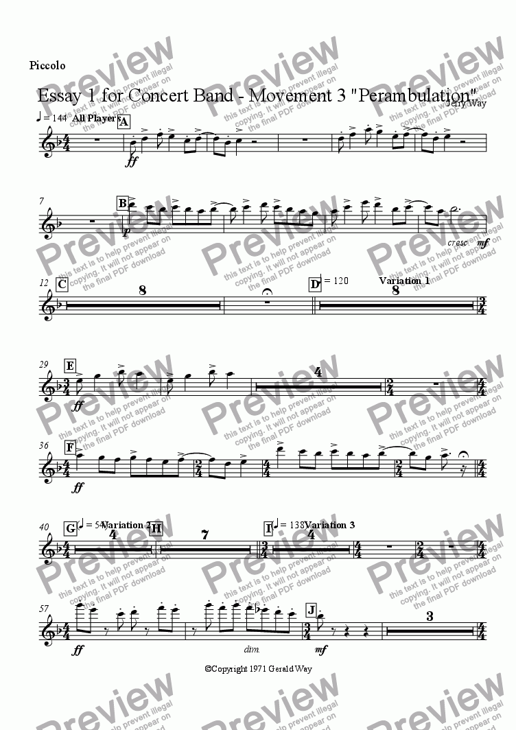 "page one of the Piccolo part from Essay 1 for Concert Band - Movement 3 ""Perambulation"""