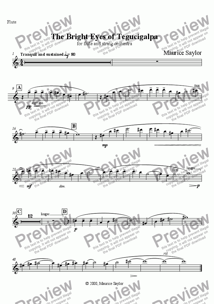 page one of the Flute part from The Bright Eyes of Tegucigalpa (fl. & str. orch.)