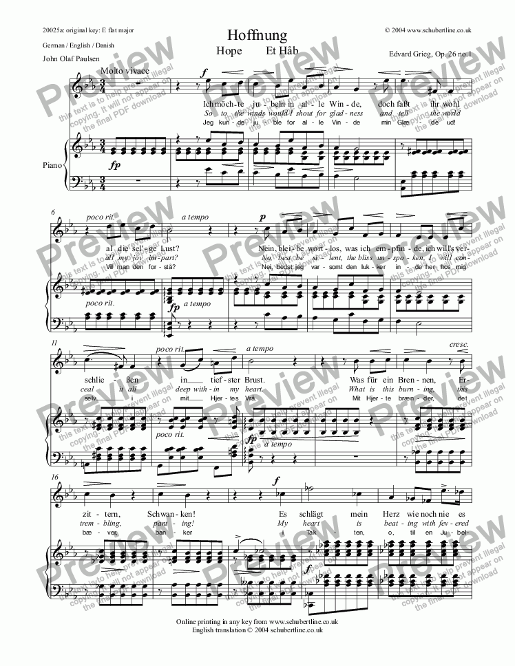 page one of Hoffnung Hope  Et Håb