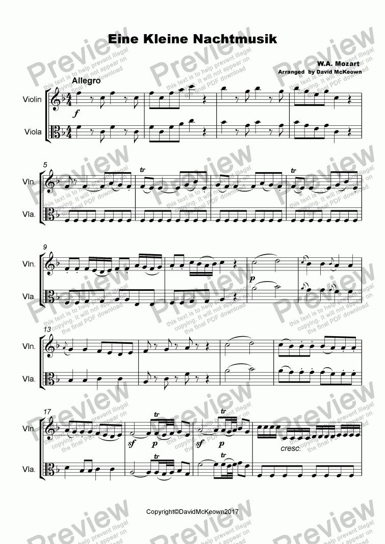 Eine Kleine Nacht Musik Duet for Violin