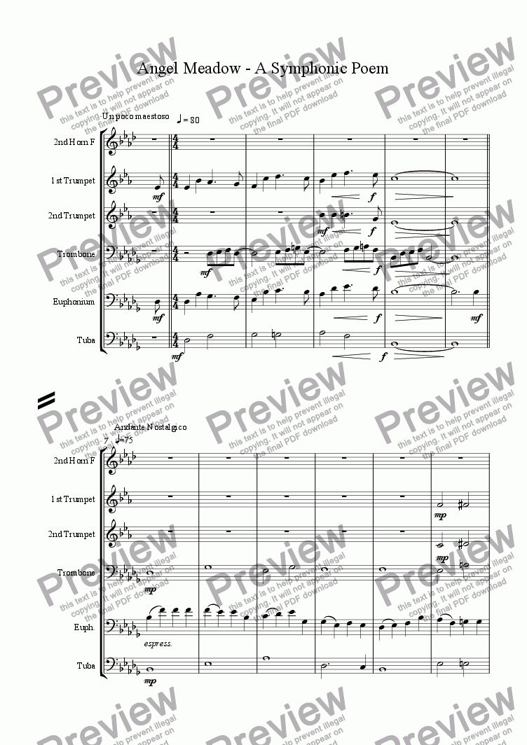 page one of Angel Meadow - A Symphonic Poem